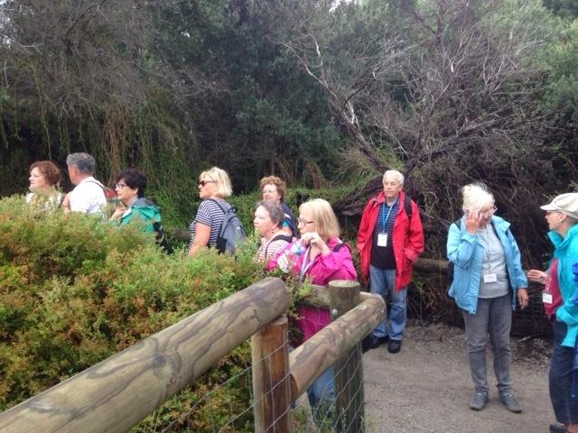 Bay Trail Beaumaris